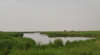坚持绿色发展 建设美丽和田——地区生态文明建设不断加强